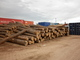 Gaspar Eduardo Etcheverry FORESTAL PRODUCTS: Seller of: wood logs, fire wood, pine logs, eucaliptus logs, saw dust, wood chips, tropical hardwoods, floring s4s, industry wood.