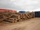 Gaspar Eduardo Etcheverry FORESTAL PRODUCTS: Regular Seller, Supplier of: wood logs, fire wood, pine logs, eucaliptus logs, saw dust, wood chips, tropical hardwoods, floring s4s, industry wood.