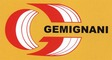 F.lli Gemignani & C. snc: Seller of: destemmer, enological machine, mixer, spiral mixer, steel wood oven, wine making machine, wine press, biodiesel screw press. Buyer of: aluminium casting, eletric engine, gear reducer, voltage trasformer, wayward plate.
