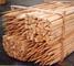 Alexander Group Ltd: Seller of: square stakes, round stakes, split stakes, sawn stakes.