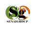 Senaigroup: Seller of: raw cashew nuts, cashew kernels, shea nuts, coconuts, dried cassava, oil palm fruits, raw peanuts, sorghum, sesame seed.