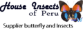 House Insects Of Peru: Seller of: butterflies, insects, moths, eegs, butterfly. Buyer of: butterfly.