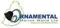 Ornamental Marine World Ltd: Seller of: aquarium fishes, fishes for saltwater aquarium, live fishes, live ornamental marine fishes, marine fishes, ornamental fishes, tropical fishes, live tropical fishes, aquarium fish. Buyer of: fish food, aquarium equipments.