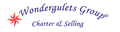 Wondergulets Group: Regular Seller, Supplier of: gulet charter, cabin charter, blue cruise turkey, gulet for sale, motor yacht for charter, sailing yacht for charter, boutique holidays in turkey.
