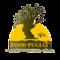 Foood Puglia Ltd: Seller of: pasta dried, pasta dried biological, pasta frozen, delicatessen italian, conserve, wine, oil, bases pizzas, stuffed pizzas in various flavors.