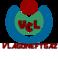 Vlagoneftgaz Consult Ltd