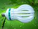 Changshu Xinhang Lighting Electronics Trading Co., Ltd.: Seller of: cfl bulbs, energy saving lamp, cfl lamp, u type cfl lamp, spiral type cfl, flower cfl, big power cfl lamp.