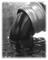 Oao Volganeftegaz: Seller of: crude oil, d2 gasoil, mazut, rebco, jp54, lng, lpg, d6, a1 jet fuel.