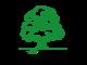 Wood-Expert LLC.: Seller of: boards oak, veneer logs ash, veneer logs beech, parquet purveyance oak, veneer logs oak.