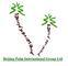 Beijing Palm International Group Ltd: Seller of: artificial palm tree, artificial coconut tree, bamboo tree, pot, artificial washington palm tree, canary palm tree, date palm tree, plastic tree, tropical tree.