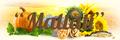 Mallati: Seller of: sunflower seed kernels bakery type, sunflower seed kernels confectionery type, walnut kernels halves, walnut kernels large and small pieces, pumpkin seeds, linseeds, mustard seeds, yellow peas, pellets.
