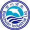 Blue-is Inc.: Seller of: anchovy, channel catfish, founder, monkfish, pollock, red fish, shrimp, salmon, tilapia. Buyer of: atlantic cod, blue whiting, haddock, hake, red drum fish.
