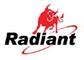 Radiant Battery (Fuzhou) Ltd: Seller of: 4r254r25-2lantern battery, alkaline battery, battery, button cell, chargeable battery, zinc chloride battery.