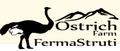 Ostrich Farm Valcea: Seller of: ostrich meat, ostrich leather, ostrich feather, ostrich eggs, ostrich shells.
