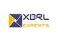 XBRL Experts