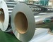 Foshan Apex Stainless Steel Company Limited: Regular Seller, Supplier of: 201304stainless steel welded pipes, 201stainless steel coils, 201430 stainless steel sheets, 430410 ba circles, stainless steel cold rolled coils, stainless steel 2bba sheets, etchedembossed steel sheets, 201430stainlesssteel circle, stainless steel 430410 ba circles.