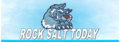Rock Salt Today: Seller of: icumsa 45, sugar, potash, beet, raw, rock salt suppliers, rocksalt sales.