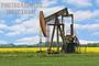 Saccha Petroleum Trading Organisation: Seller of: d2 russian gas lo-02-62 gost 305-82, lnglpg, jet fuel aviation kerosine colonial grade54 jet fuel jpa1, rebco, mazut m100 russian gost 10585-7599, bonny light crude, bonny light crude oil.