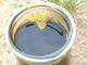 Sozotech Ireneusz Karczynski, Jaroslaw Karczynski s.c.: Seller of: acid oil, energetic use, fatty acid, fatty acids, heating oil, rapeseed acid oil, rapeseed fatty acids, biodiesel, acid oils.
