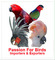 Passion For Birds: Seller of: parrots, budgriger, cockateil, love birds, indian ringneck, grey parrot, mynah, peacock, finches. Buyer of: grey parrot, macaws, swan, gouldian finch, canaries, rosella, cockatoos, lorikeet, crown pigeon.