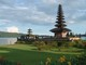 UD Sinar Jaya: Seller of: bonsai gallery, exotic plant, furniture high quality, land for lease in bali, painting of maestro, villa for sale in ubud, land for sale in bali, tour guide services, land for sale in ubud.