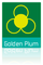 Yiwu Golden Plum Fashion Accessories Ltd.: Seller of: belts, leather belts, pu belts, buckles, bags, key holders.