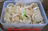 Edible Bird's Nests