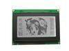 Monochrome graphic character/alphanumeric LCD module