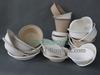 Biodegradable bagasse disposable tableware