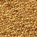 Sesame Seeds (Natural, Hulled, Roasted, Black)