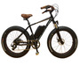Fat Tyre Electric Bike with Original Design