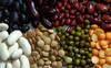 Swati export product list sesame seed, turmeric, cumin seeds