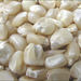 Wholesale Yellow Corn & White Corn/Maize for Human & Animal Feed Consu