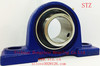 High Quality UCP210-31Mounted Ball Bearing Units/ Pillow Block Bearing
