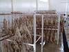 Donkey sausage casings