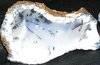 Rough Blue Chalcedony