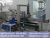 Fully-auto 5-10-20 Litre BiB Filling Machine Bag in Box Cartoning Line