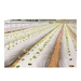 Plastic film greenhouse plant grow bag water-saving products