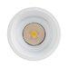 10w COB LED downlight