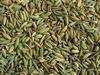 Tamarind, Potato, Dry coconut, Sesame seed, coriandre seed, fennel seed