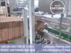 Erect-Insert-Seal Carton Packaging Machine for Packing Stand Up Pouch