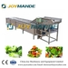 Industrial Automatic Air Bubble Vegetable And Fruit Washing Machine