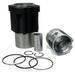 Engine spare parts (piston, cylinder liner, piston ring)