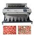 5000*3 Pixel, LED CCD Color Sorter Machine