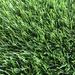 New Design 5-Color Artificial Turf For Landscape Decoration