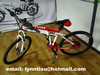 Folding electric bicycle with built-in battery