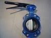 Butterfly valve (wafer & lug type)