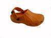 Footwear/sandal /slipper/flip flop