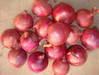 Fresh garlic/apples/onion