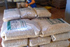 1000 Tons of White wood pellets for sale